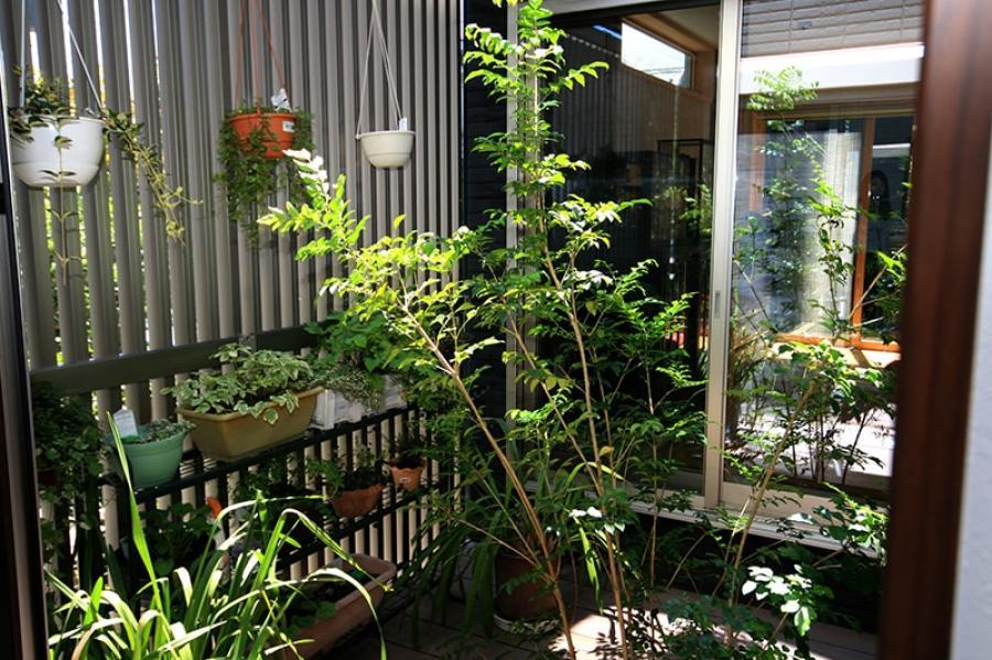 プライベートなアウトドア空間の中庭